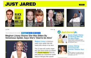 Stratpharma products being mentioned in a Just Jared Blog Article